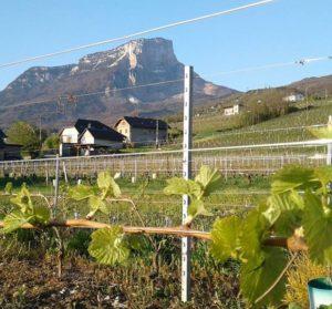 Saveurs de nos fermes-Magasin de producteurs Saveurs de nos fermes -Albertville-Gilly Sur Isère-savoie- vente directe- agriculteur-produits locaux-