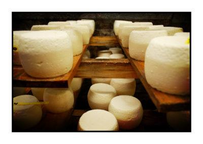fromages-Saveurs de nos fermes-Magasin de producteurs Saveurs de nos fermes -Albertville-Gilly Sur Isère-savoie- vente directe- agriculteur-produits locaux-