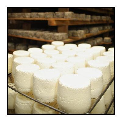 cave à fromages-Saveurs de nos fermes-Magasin de producteurs Saveurs de nos fermes -Albertville-Gilly Sur Isère-savoie- vente directe- agriculteur-produits locaux-