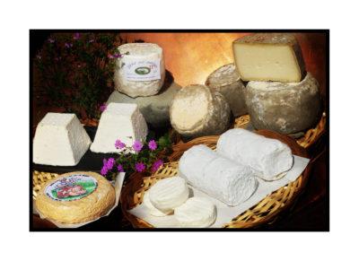 fromages de savoie-Saveurs de nos fermes-Magasin de producteurs Saveurs de nos fermes -Albertville-Gilly Sur Isère-savoie- vente directe- agriculteur-produits locaux-