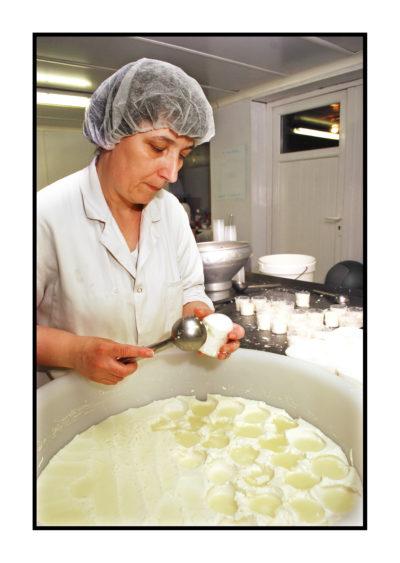 fabrique fromage-magasin de producteur-gilly sur isère-albertville- terroir-vente directe-savoie