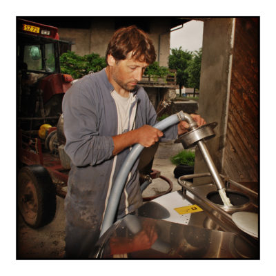 lait-magasin de producteur-gilly sur isère-albertville- terroir-vente directe