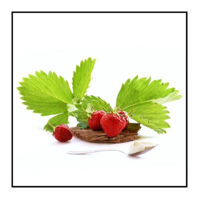 fraises-bio-Pommes bio- locales- arboriculteur- ferme-magasin de producteurs - Gilly sur Isère / Albertville- savoie - terroir