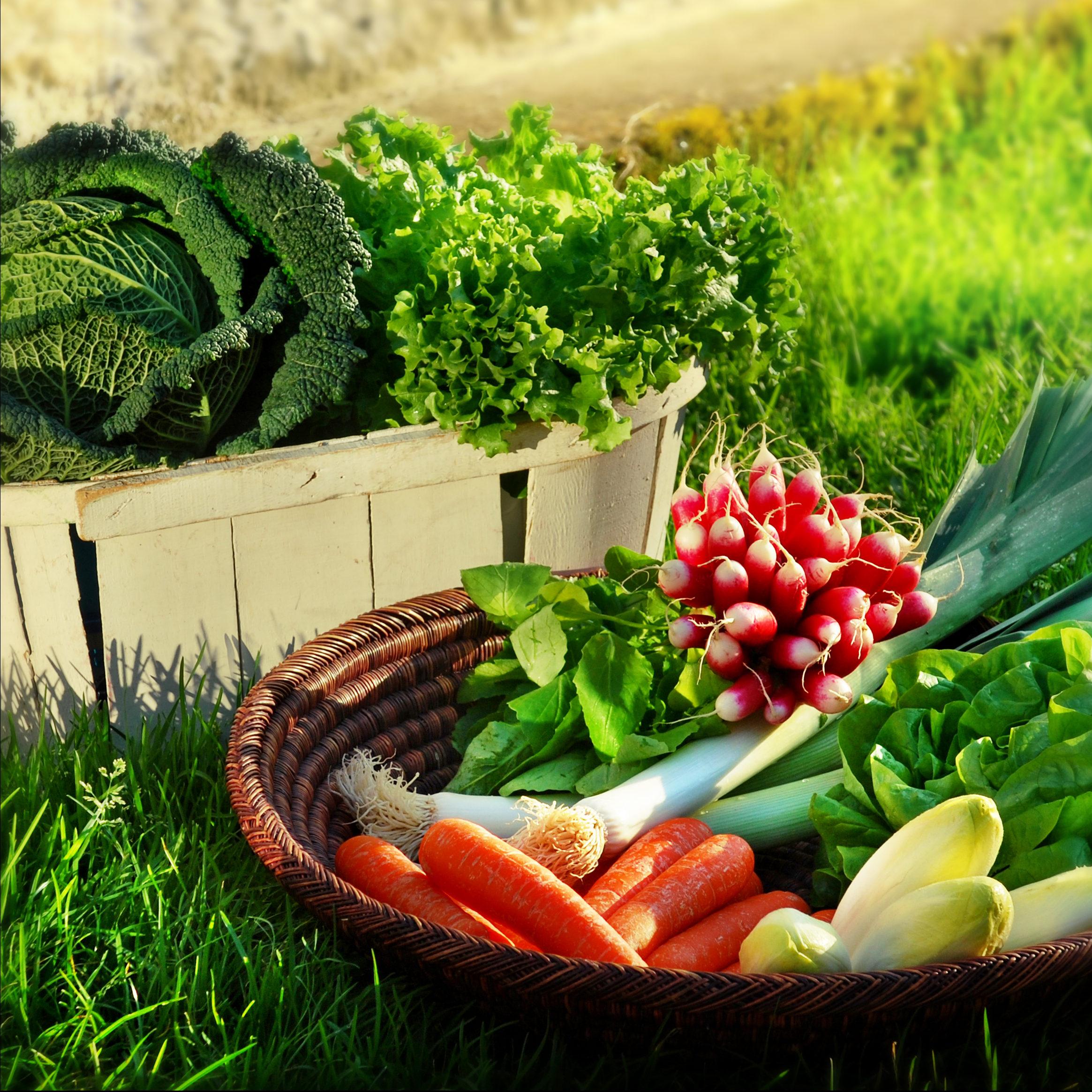 Légumes de notre magasin de producteurs à Gilly sur Isère / Albertville